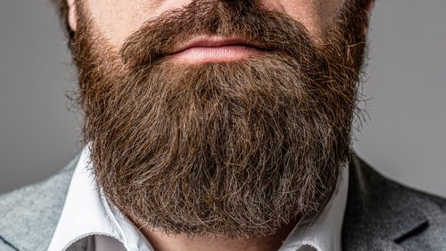 Pogonophobia: The Truth About The Fear Of Beards
