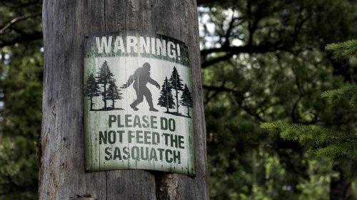 Where Do People Say Sasquatch Lives?