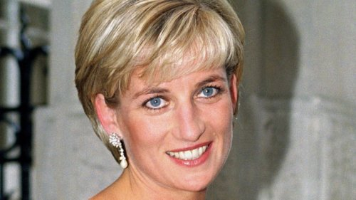 The Untold Truth Of Prince Diana's Surprising Panorama Interview