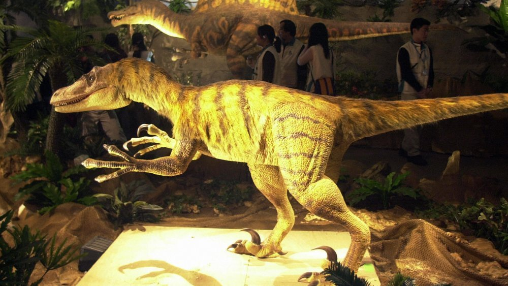 Were Velociraptors Smarter Than Dogs?