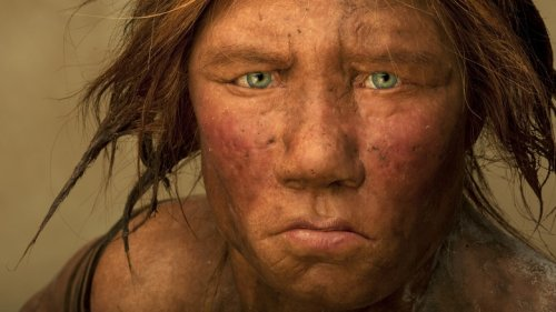 This Is What Neanderthals Voices Actually Sounded Like