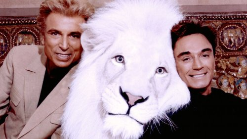 What Happened To Siegfried And Roy's Animals?