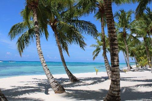 Precisa de visto para ir para Punta Cana?