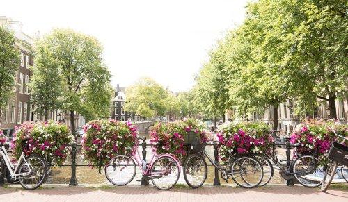 Amsterdã usará flores para manter suas pontes livres de bicicletas trancadas
