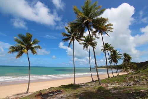Melhores praias entre Recife e João Pessoa