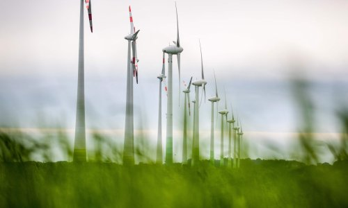 Global renewable energy industry grew at fastest rate since 1999 last year
