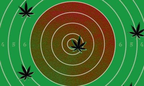 Is medical cannabis really a magic bullet?