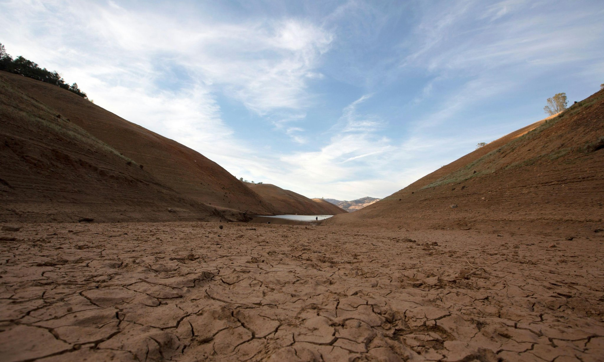 'Potentially the worst drought in 1,200 years': scientists on the scorching US heatwave