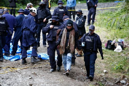 'War in the woods': hundreds of anti-logging protesters arrested in Canada