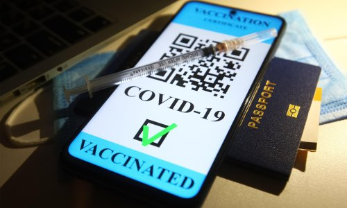 Vaccine passports look inevitable, so what rights do New Zealanders have?