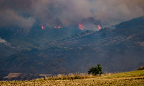 Eight dead as wildfires continue to rage across southern Europe