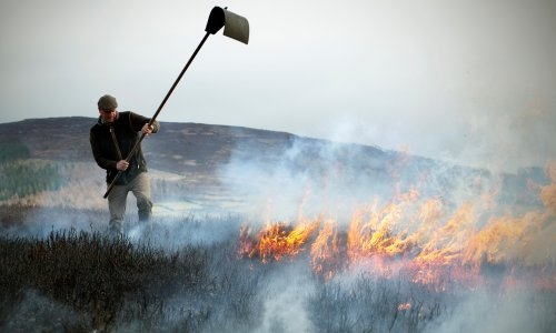 'It has become them and us': the battle to burn England's moorlands