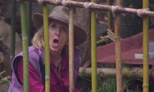 Who'll save us all from Covid? Apparently, it's Gillian McKeith and Right Said Fred