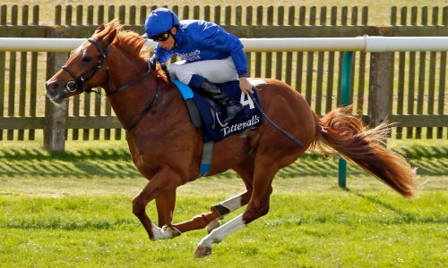 Modern Games may jet to the US for Breeders' Cup after Newmarket romp