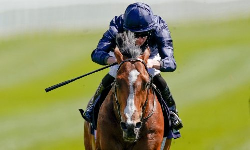 Royal Ascot day two: Armory has firepower for Prince of Wales's Stakes