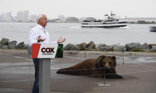 California governor candidate under investigation over 1,000lb bear sidekick