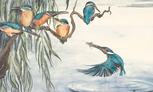 True to nature: Robert Macfarlane, Helen Macdonald and more on the children's books that inspired them