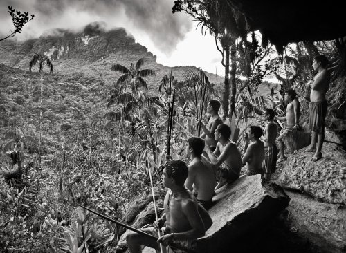 'Paradise exists!': Sebastião Salgado's stunning voyage into Amazônia