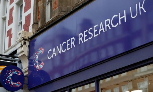 Mystery of the environmental triggers for cancer deepens