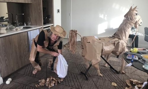 Horsing around: Australian man creates paper pony out of lunch bags in hotel quarantine