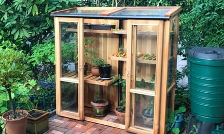 How to buy and set up a tall cold frame