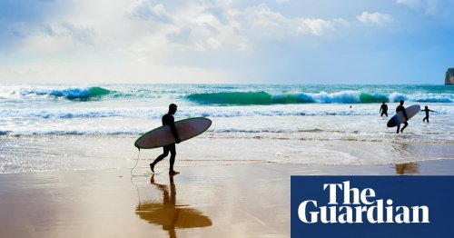 Surfer dies after being bitten by 4.5m great white shark on NSW mid-north coast