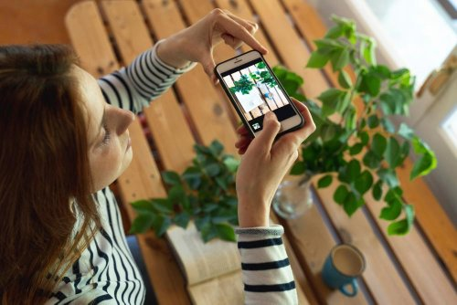 'A freebie is enough': influencer gift posts trigger breaches in Australian ad standards
