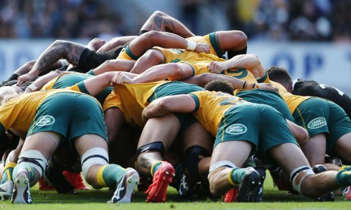 Wallabies face tough assignment to storm fortress Eden Park and lay claim to Bledisloe Cup