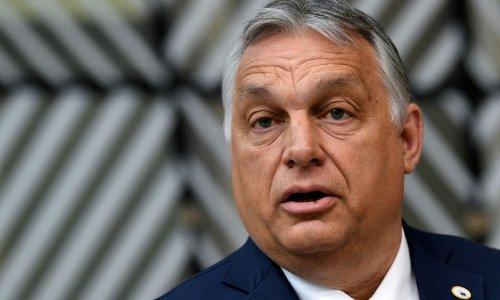 Hungary's Viktor Orbán will hold referendum on anti-LGBT law