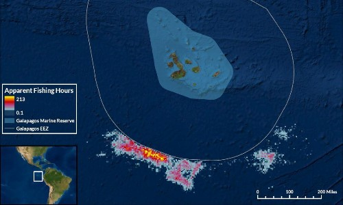 Chinese fishing armada plundered waters around Galápagos, data shows