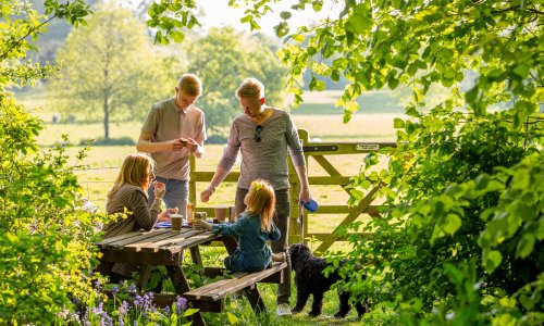 20 of the best (and dog-friendly) alternatives to motorway services