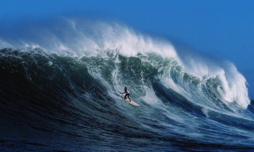 'It blew our minds': the surfers who braved sharks to ride Africa's mightiest wave