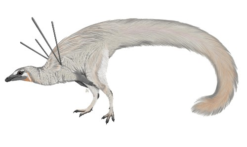 'Like nothing seen in nature before': strange dinosaur has scientists enthralled