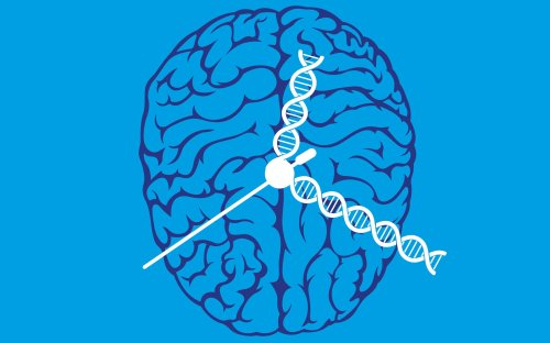 Epigenetics, the misunderstood science that could shed new light on ageing