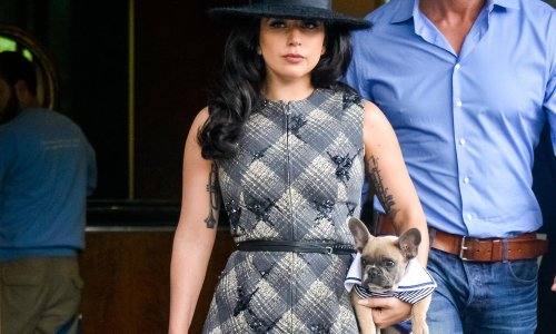 Five arrested in Lady Gaga dognapping case – including the woman who returned them
