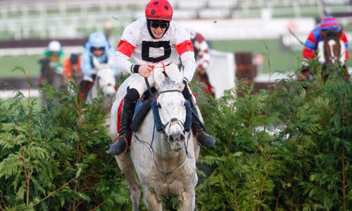 Talking Horses: Some Neck backers face anxious wait ahead of National