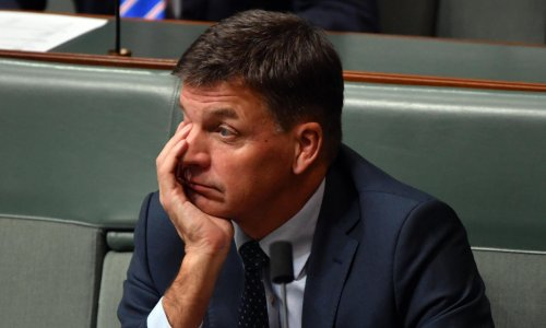 Senate sinks Angus Taylor's plan to allow renewables agency to invest in fossil fuel technologies