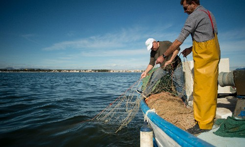 Can Spain fix its worst ecological crisis by making a lagoon a legal person?
