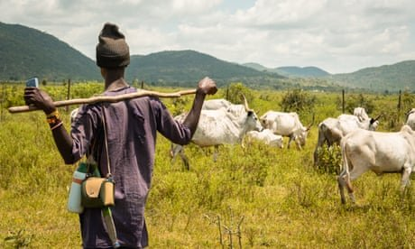 Trail's end: the days of roaming free are numbered for Nigeria's herders