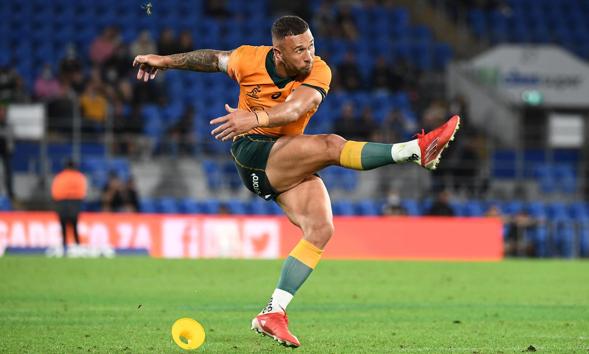 Quade Cooper gamble pays off as Wallabies beat South Africa at their own game   Rugby Championship