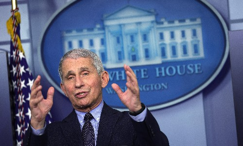 Fauci says he was the 'skunk at the picnic' in Trump's Covid team
