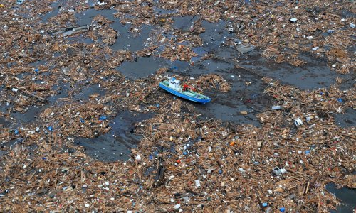 Plastic rafting: the invasive species hitching a ride on ocean litter