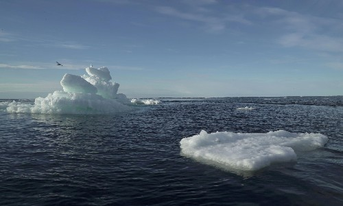 Clothes washing linked to 'pervasive' plastic pollution in the Arctic