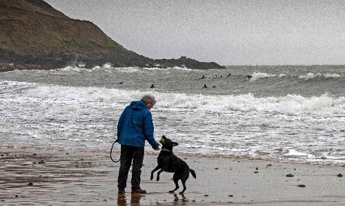 Dog's Best Friend by Simon Garfield – our canine fascination