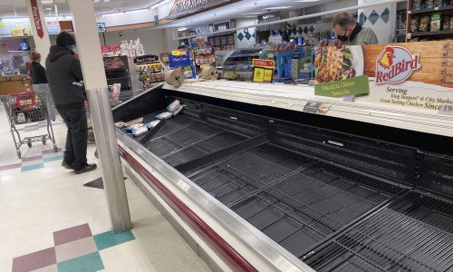 Cars, lumber and chicken: the shortages triggered by the end of lockdowns
