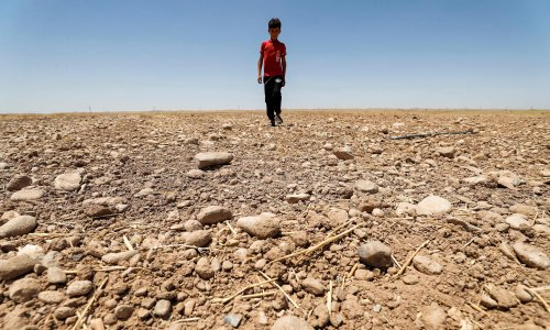 Children set for more climate disasters than their grandparents, research shows