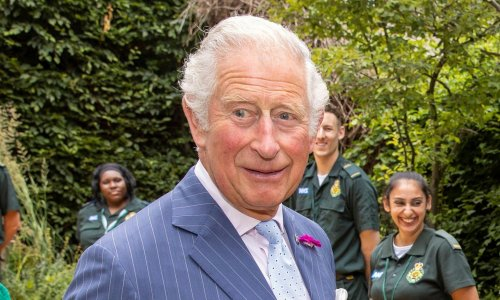 Police interviewed Prince Charles over 'plot to kill Diana'