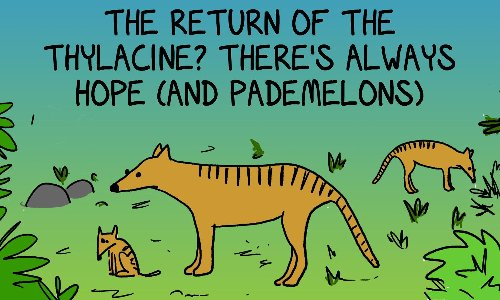 The thylacine that wasn't even though we wish it was