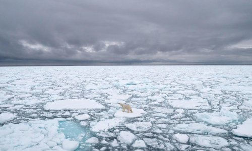 How melting glaciers have accelerated a shift in Earth's axis