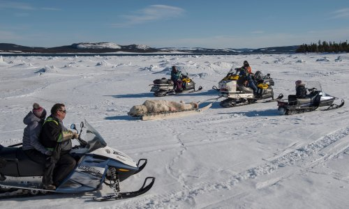 'We know who we are': Inuit row raises questions over identity and ancestry